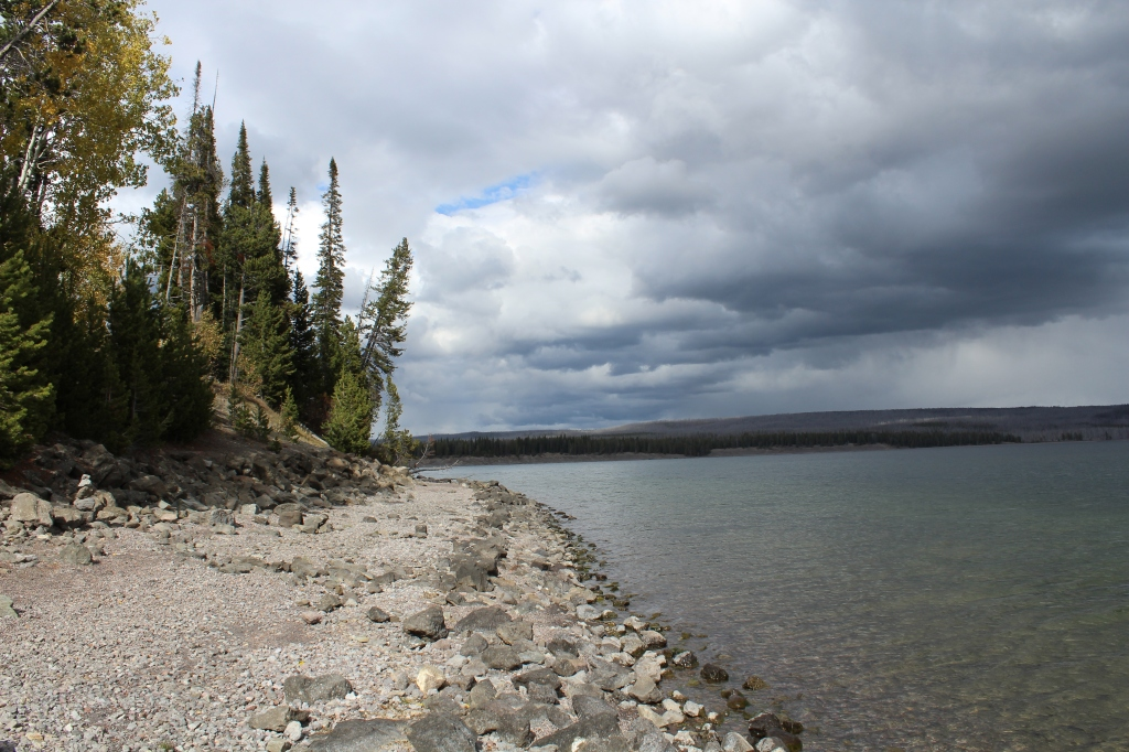 picture of the shoreline of Yellowstone Lake
