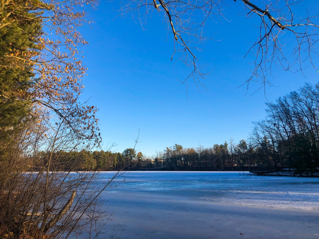 image of a frozen pond with some snow on the ground