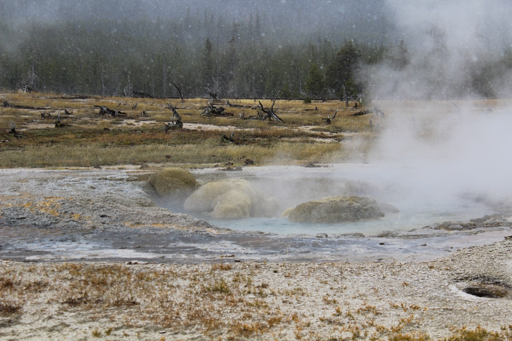 hot spring, location unknown inside Yellowstone