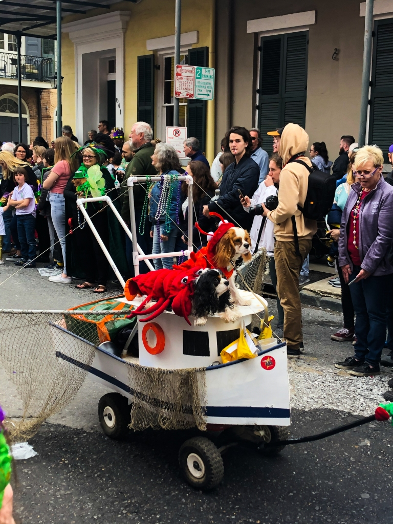 image of two dogs, both dressed as lobsters, on top of a float made to look like a fishing boat