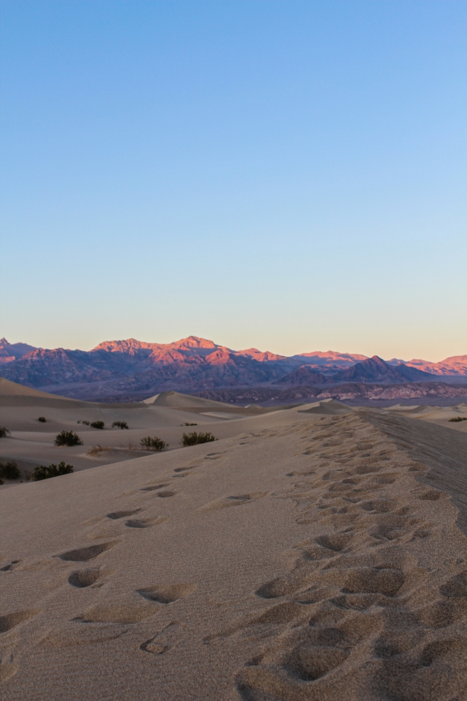 sitting atop one of the sand dunes watching the sunset at the Mesquite Flat Sand Dunes