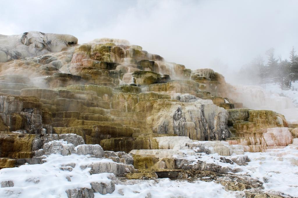 Terrace at Mammoth Hot Springs
