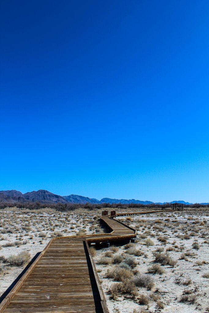 Boardwalk behind the Visitor's Center at the Ash Meadows National Wildlife Refuge